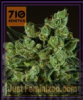 710 Genetics - Old White Widow - Feminized 5 Seeds